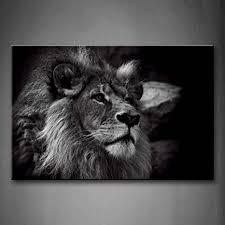 wall löwe löwen bilder leinwand 24x36inch bild schwarz weiß tier wandbilder wohnzimmer moderne für schlafzimmer dekoration wohnung home deko