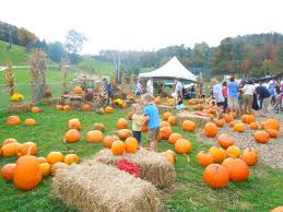 Pumpkin Patch Indiana County Pa by Halloween In Laurel Highlands Pa Halloween Family Fun