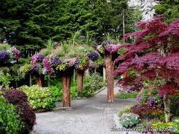 Beautiful Alaska Botanical Garden Alaska Botanical Garden Alices