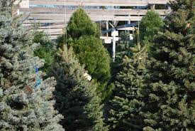 Christmas Tree Shop Deptford Nj Application by Wolff U0027s Apple House Local Farm Market U0026 Garden Center In Media Pa