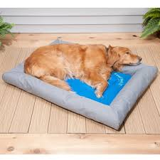 cooling bed dog cooling pad for dogs keeping your best friend