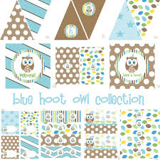 Blue Hoot Owl Party Decorations For Birthday Party Or Baby