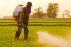 Alliance For Natural Health Glyphosate Monstanto Roundup Carcinogens Cancer World