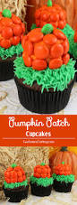 Best Atlanta Pumpkin Patch by Halloween Pumpkin Patch Cupcakes Two Sisters Crafting