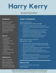 Account Executive Resume Example Product Management And Marketing Executive Resume Example Manufacturing Operations Consulting Executive Resume 8 Amazing Finance Examples Livecareer Executiveume Template Assistant Administrative Sample 30 Best Samples Jribescom Basic Templates Account Writing Guide 20 Tips Free For 2019 Download Now By Real People Yamaha Ecommerce Executiveary Example Marketing Velvet Jobs 9 Regional Sales Manager Collection