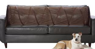 Best Fabric For Sofa With Dogs by Amazon Com Couch Defender Couch Defender Keep Pets Off Of Your