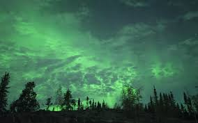 Best Type Of Christmas Tree Lights by The Northern Lights Will Be Visible In The U S Tonight Travel