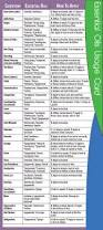 Lampe Berger Instructions For Use by Best 25 Essential Oil For Burns Ideas On Pinterest High Company