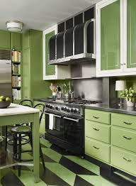 Mesmerizing Green Kitchen Cabinets Pictures Of Rustic Brown