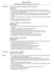 Download Manufacturing Team Leader Resume Sample As Image File