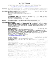 Dsp Engineer Sample Resume 8 Personal Assistant Objective s