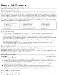 Information Technology Resume Sample Image Gallery Of It Samples Example