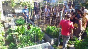 Permaculture Design Course | CERES Community Environment Park Thriving Backyard Food Forest 5th Year Suburban Permaculture Bill Mollison Father Of Gaenerd 101 Pri Cold Climate Archives Chickweed Patch Garden Design With Permaculture Kitchen Herb Spiral Backyard Orchard For The Yards Pinterest Orchards Australian House Garden January 2017 Archology Download Design And Ideas Gurdjieffouspenskycom Sustainable Farm Future Best 25 Ideas On Vegetable Youtube