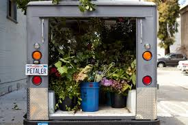 Above Rebekah Northway Has Been A Florist For Eight Years When She Realized Couldnt Fit Tall Branches In Her Old Sport Utility Vehicle