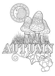 Stephen Barnwell Illustration Equinox Coloring Book