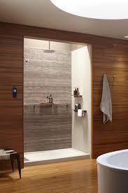 Bathroom Renovation Fairfax Va by Kohler Choreograph Renovations Bathmasters Masters Of Bathroom