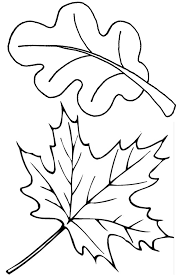 Two Fall Leaves Coloring Page