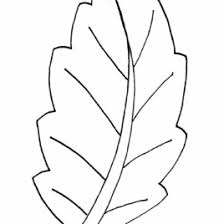 Coloring Pages Leaf Shapes Kids Drawing And