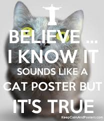 BELIEVE I KNOW IT SOUNDS LIKE A CAT POSTER BUT ITS TRUE Poster