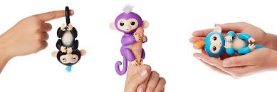 Cheap Fingerlings Baby Monkeys
