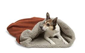 Burrowing Dog Bed by 2016 Top Gear Awards