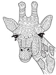 Zentangle Giraffe Head Coloring Picture