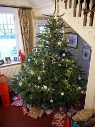 Christmas Tree Meringues Sainsburys by 2014 Handbags And Cupcakes