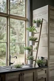 Best Kitchen Plants Ideas On Pinterest Inspiration Green Tile And Decor Life