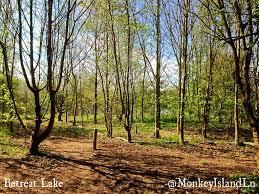 100 Bray Island Retreat Lake Welcome To Monkey Lane