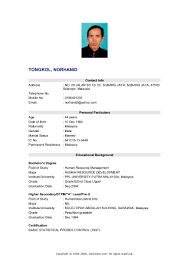 Curriculum Vitae Information Technology