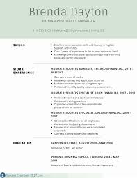 Executive Summary Resume Example Template Sample Pdf For Awesome Fresh New Best