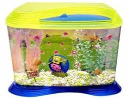 Spongebob Fish Tank Accessories by Spongebob Squarepants Aquarium Kit 1000 Aquarium Ideas 1000