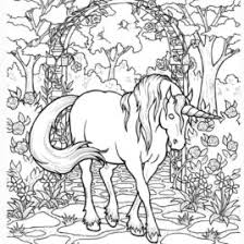 Unicorn Coloring Pages For Adults All About Coloring Pages