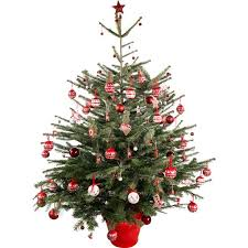 5ft Christmas Tree Asda by The Cheapest Places To Buy A Real Christmas Tree This Year