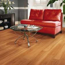 Steam Mops On Laminate Wood Floors by Steam Mop Laminate Wood Floors Images Home Flooring Design