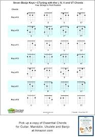 4 String Banjo Chord Chart Standard Tuning C G D A Includes The Major Minor And Seventh Fingerings Fret Board With All Of Charter Definition Quizlet