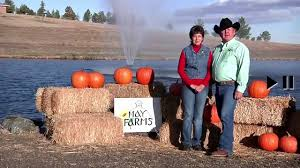 Griffin Farms Pumpkin Patch by Corn Mazes And Pumpkin Patches Near Denver 2017 Axs