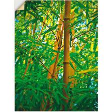 artland wandbild bambus nahaufnahmen gräser 1 st