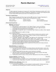Senior Qa Analyst Resume Sample Unique Business Summary Examples Best Templates Of