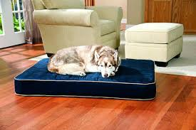 orthopedic bolster dog beds for large dogs big barker 7 pillow top