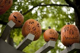 Apple Pumpkin Picking Queens Ny by Best Kid Friendly Halloween Events In Nyc October 8 14