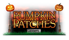 Maxwells Pumpkin Patch Amarillo Texas by Pumpkin Patches In Texas