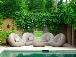Outdoor Furniture Set Also Rich Climbing Plant On Privacy Fence Plus Great Small Garden Design Feat Pool Beautiful And Peaceful Ideas