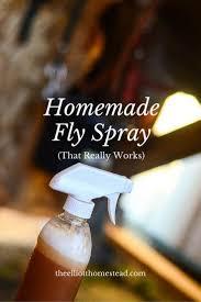 Fresh Drop Bathroom Odor Preventor Ingredients by Best 25 Homemade Fly Repellant Ideas On Pinterest Fly Spray