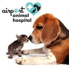 airport animal hospital airport animal hospital 22 photos veterinarians 3444 airport