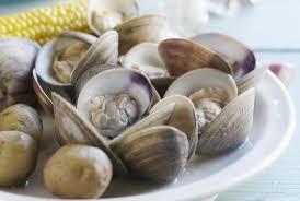 comment cuisiner des palourdes comment préparer les palourdes conseils clam de cuisine