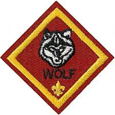 Cub Scout Committee Chair Patch Placement by Home Ocee Pack 699