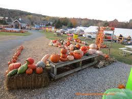 Meadowbrook Pumpkin Farm by Meadow View Farm U2013 Corn Maze U0026 Lil U0027 Red Shed This Connecticut Mom