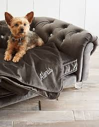 Boots And Barkley Dog Bed by 607 Best Pampered Pets Images On Pinterest Pet Products Pet