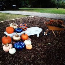 Pumpkin Patch Auburn Al by 27 Best Auburn For The Holidays Images On Pinterest Auburn